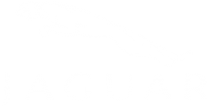 Jaguar Car Servicing