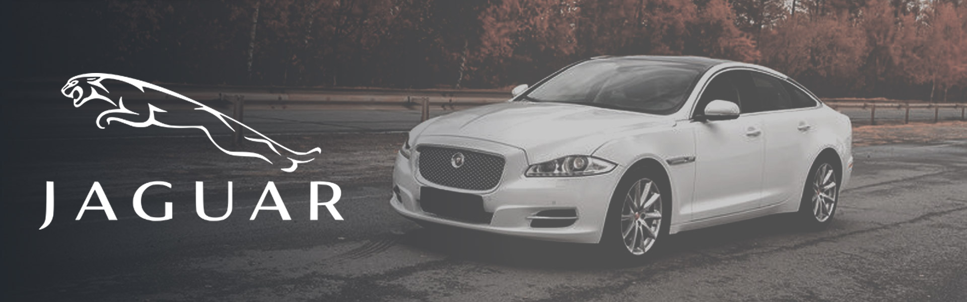 Jaguar Car Servicing Rotherham